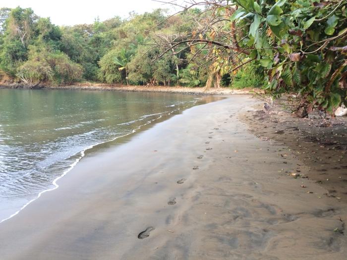 73 Boca Brava Run (14)