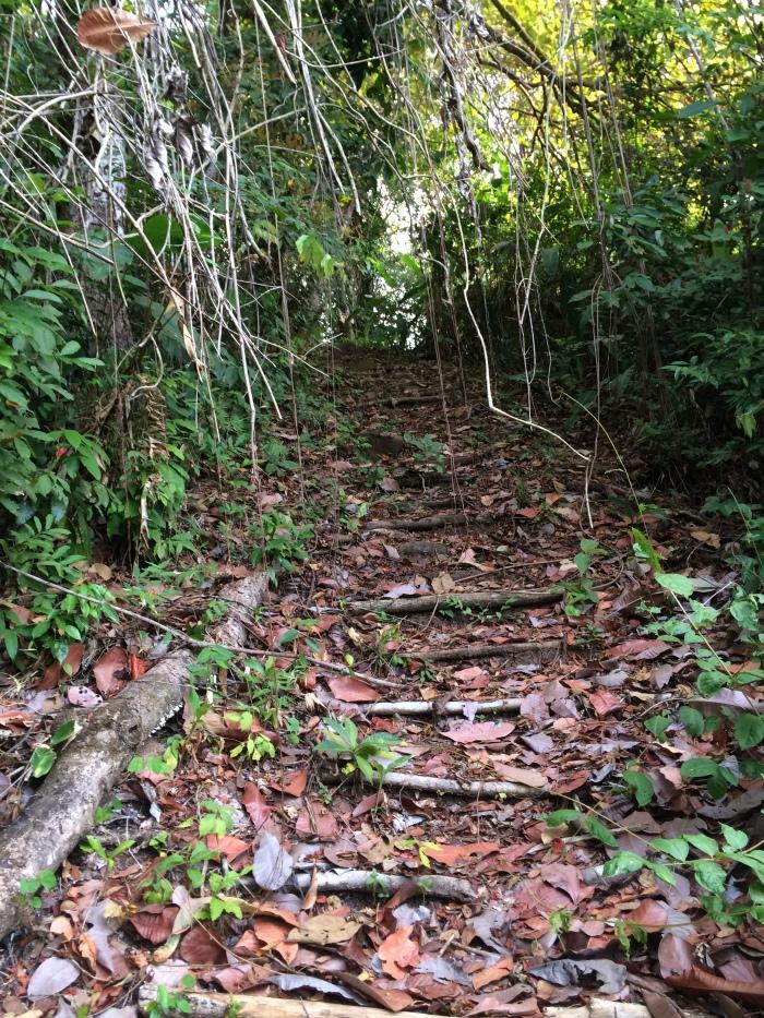 Boca Brava Run (30)