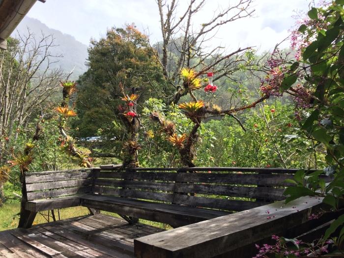 Mt Totumas Run and Drive to Boq (10)